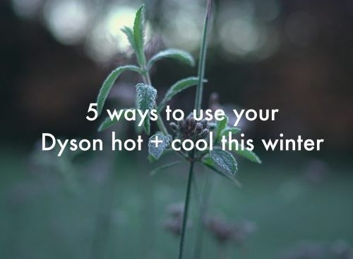 Dyson Hot and Cool Home Fan. Director