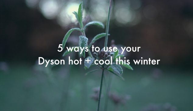 Dyson Hot and Cool Home Fan
